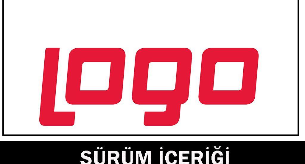 Logo muhasebe programı nedir