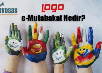 Logo E-Mutabakat İşlemleri