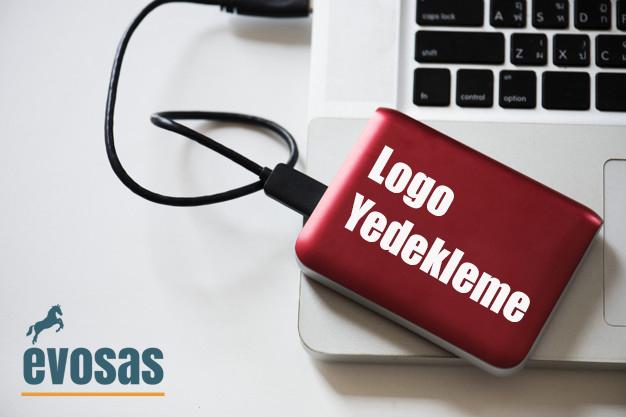 logo muhasebe programı yedek alma