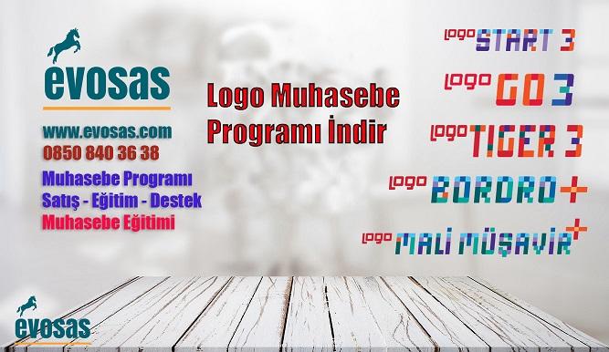 logo muhasebe programı indir