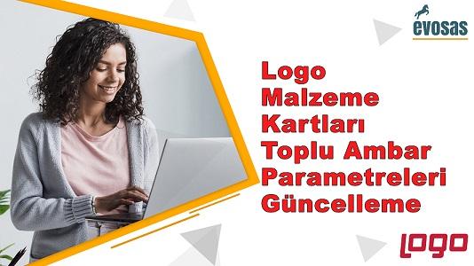 Logo Malzeme Kartları Toplu Ambar Parametreleri Güncelleme