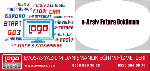 Logo E-Arşiv Fatura Dokümanı