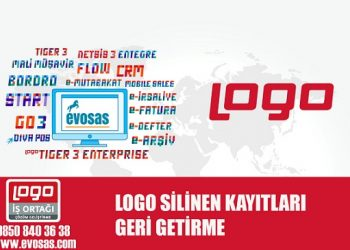 Logo Silinen Kayıtları Geri Getirme
