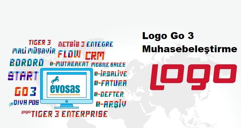 Logo Go 3 Muhasebeleştirme