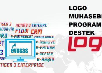 logo muhasebe programı destek